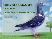 HU12-M-130465-Pava-Zoli-F02