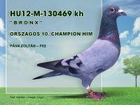 HU12-M-130469-Pava-Zoli-F02