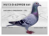 HU13-D-629928-kkt-Kovacs-F33