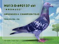 HU13-D-692137-Pava-Zoli-F02