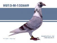 HU13-M-132669-Szabo-F33
