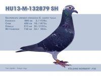 HU13-M-132879-SH-Folding-N-F30