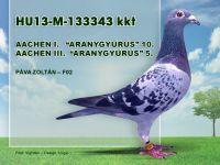 HU13-M-133343-Pava-Zoli-F02