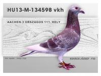 HU13-M-134598-H-Kovacs-F33