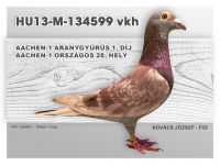 HU13-M-134599-H-Kovacs-F33