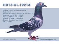 HU13-OL-19213-Folding-N-F30