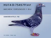 HU14-D-754579-T-Cenkvari-F30