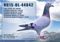 HU15-OL-44842-T_1