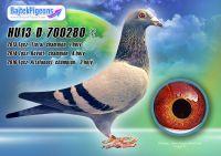 HU13-D-700280-kt---OK