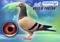HU13-D-700280-kt-V---OK