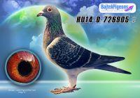 HU14-D-726905-kkt-V---OK