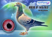 HU16-D-145763-kkt-E---OK