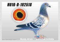 HU16-D-192518-kkt---OK