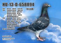 HU-13-D-658894-H---OK--3