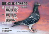 HU-13-D-658894-H---OK--4