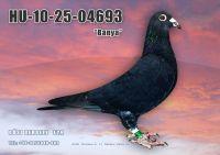 HU10-25-04693-T---OK