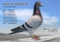 HU11-D-395474-H---OK2