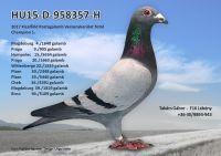 HU15-D-958357-H---OK2