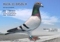HU16-11-04526-H---OK2