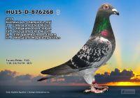 HU15-D-876268-T---OK3