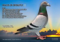 HU15-D-876272-T---OK3