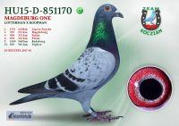 HU15-D-851170-H