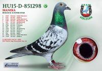 HU15-D-851298-T