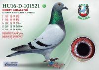 HU16-D-101521-T