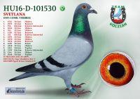 HU16-D-101530-T