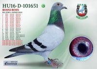 HU16-D-101651-T