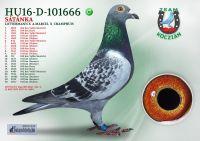 HU16-D-101666-H