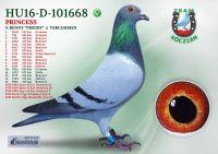 HU16-D-101668-T