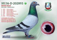 HU16-D-202893-H