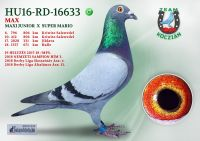 HU16-RD-16633-H