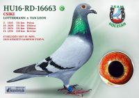 HU16-RD-16663-T