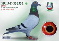 HU17-D-336535-T