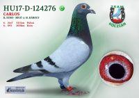 HU17-RD-124276-H