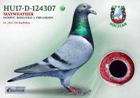 HU17-RD-124307-H