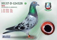 HU17-RD-124328-T