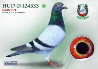 HU17-RD-124333-H