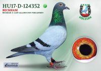 HU17-RD-124352-H