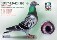 HU17-RD-124393-T