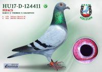 HU17-RD-124411-T