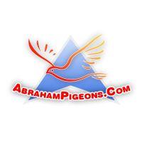 Abraham_logo